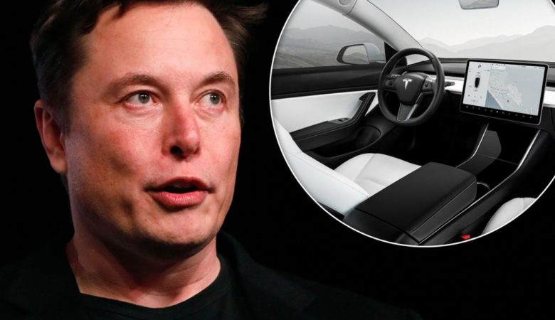 Toot your own horn: Elon Musk hints that Tesla owners will be able to  choose custom horn sounds | Daily Mail Online